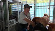 Hong Kong pet funerals aim to avoid landfill sites