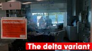 What we know about the delta variant following new report