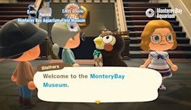 Tour the 'Animal Crossing' museum with Monterey Bay Aquarium's Twitch streams