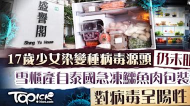 【變種病毒】天盛苑三母女家中雪櫃食物包裝帶新冠病毒 涉來自泰國的急凍鱷魚肉 - 香港經濟日報 - TOPick - 新聞 - 社會
