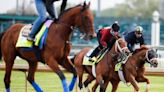 A run through the field: Odds and info on every 2021 Kentucky Derby contender