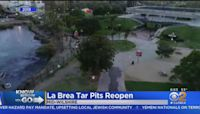La Brea Tar Pits Reopens Thursday For First Time Since March 2020