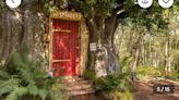 Vacation rental 'fit for Disney's Winnie the Pooh' opening in England. Look around
