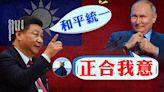 北京涼了 普京反對武統臺灣 習近平對臺存在嚴重認知缺陷(視頻) - - 博談