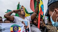 Ethiopia's pro-government supporters protest against TPLF in Addis Ababa