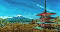 Japanese Culture and Tradition | Japanese Translation
