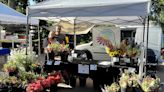 Marni Jameson: Reader replies about floral arrangements offer mixed bouquet