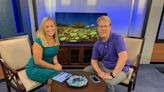Local group bringing comedy to Bay County