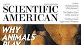 透過遊戲學習社交 可緩解家庭關係(科學人 Scientific American) - 台灣醒報 Awakening News Networks