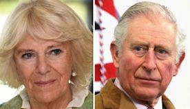 Royal heartbreak: Camilla's husband Prince Charles 'gives a little hope in hopeless world'