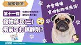 信健康-- 【寵愛醫道】第十一課:寵物移民(三)飛前可以打鎮靜劑?
