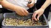 Ammunition Shelves Bare as U.S. Gun Sales Continue to Soar | U.S. News® | US News