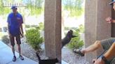 貓咪遭滅蟲公司職員一腳踢飛 凌空拋落地受驚逃走 | 大視野