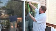 Four easy ways to prevent birds from hitting your windows at home