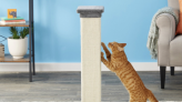 The Best Cat Scratching Post so Your Little Monster Will Stop Clawing at Your Legs