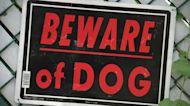 Suburban dog attack victims sue owner