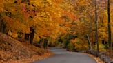 Scenic, relaxing drives to enjoy fall colors (and stop for a bite!) in North Jersey