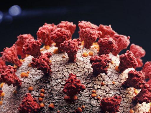 新冠疫情:「Delta+」病毒變種傳染性可能更高