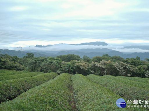 一起來「新竹走走」 關西、北埔旅遊路線正夯