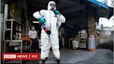 台灣疫情:本土確診新增333例 再創單日新高