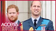 Prince Harry & Prince William Expected To Have Private Meeting After Princess Diana Statue Unveiling (Report)