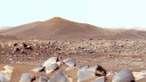 Have humans already contaminated Mars with Earth-born microbes?