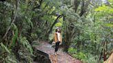 都市中的農村美景,一覽台北市的3大休閒農業區 | 蕃新聞