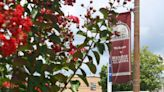 Red Bay City Council conducts monthly business - Franklin County Times