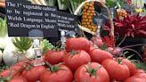 食品與環境:撼動英國食品行業的新潮流--「本地食品」