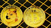 Dogecoin Value Sees Massive Support: Is It the Next Bitcoin?