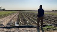 Organizations teaming up to help small CA farmers impacted by drought