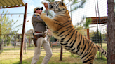 'Tiger King' Just Released the Trailer For Season 2 & It Includes Footage of Joe Exotic in Jail