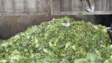 蔬菜量增反而賣不掉價格暴跌 北農6噸菜「當垃圾報廢」 - 工商時報