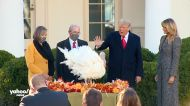 Trump pardons turkey at White House ceremony