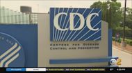 CDC Says Some Vaccinated People Should Wear Masks Indoors Again Because Of Delta Variant Spread