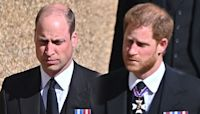 Prince Harry Returns to US After Prince Philip's Funeral in UK