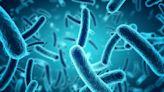 CDC investigating salmonella outbreak in 25 states