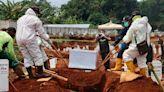 印尼疫情死亡數東南亞最高 掘墓工24小時待命