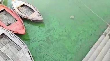 恆河水變綠散發惡臭,專家警告水裡有毒,官方稱參數正常不用擔心