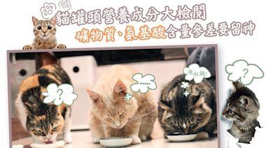 【消委會】20款濕貓糧礦物質含量不符國際標準 7款主食罐鐵質含量偏低或礙幼貓成長 - 香港經濟日報 - TOPick - 新聞 - 社會