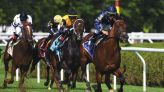 Golden Pal puts on a show in Grade 3 Quick Call