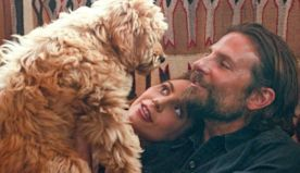 The Breakout Star Of 'A Star Is Born' Is Bradley Cooper's Real-Life Dog