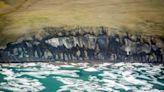 'Groggy climate giant' slowly awakening from under Arctic Ocean