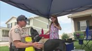 A Young Girl Is Helping To Protect 4 Legged CPW Officers By Raising Money With A Lemonade Stand