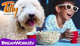 Paws Off The Popcorn | TILLY THE TRICKY DOG