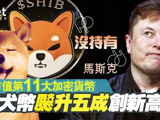 【虛擬貨幣】柴犬幣飈升五成創新高、成市值第11大加密貨幣 馬斯克︰沒持有 - 香港經濟日報 - 即時新聞頻道 - 即市財經 - 股市