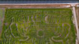 Artesia corn maze draws inspiration from the state