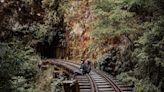 全台5大絕美「山林秘境」行程推薦!阿里山眠月線、水漾森林、十七歲少女湖...美如仙境,戶外愛好者快征服