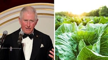 Prince Charles Urges Citizens to Help Struggling Farmers With Their Harvests