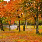 Hokkaido-阿寒国立公園ー屈斜路湖 by Flickr user Jennifer 真泥佛